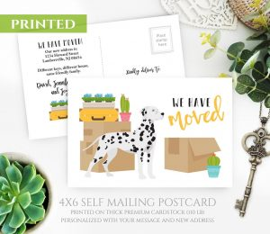 Dalmatian Moving Cards Announcements